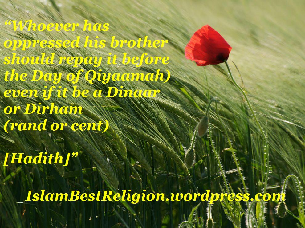 Hurting Others Quotes Islam Is The Best Religion On The Universe