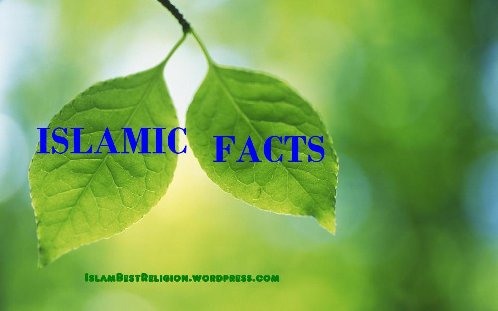 Interesting Facts About Islam